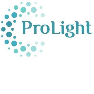 Professional Light Trading Est